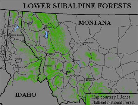 Green represents lower subablpine forest, 38% of the forested lands within this region